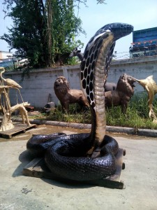 Giant Bronze cobra